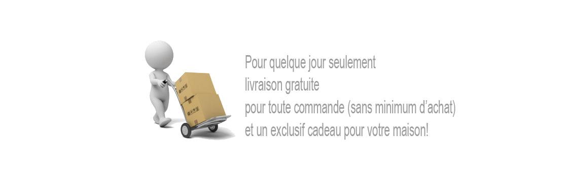 slide-FR-spedizione