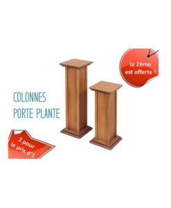 PROMO ! Colonne porte plante + 1 offerte